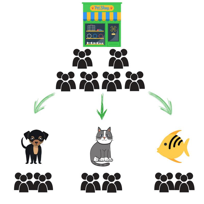 Email Marketing Segments
